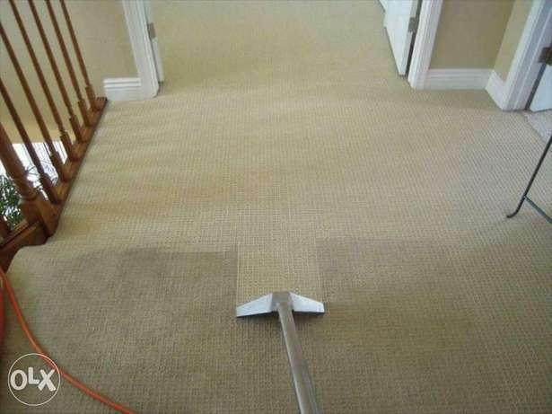 Sofa and carpet cleaning service
