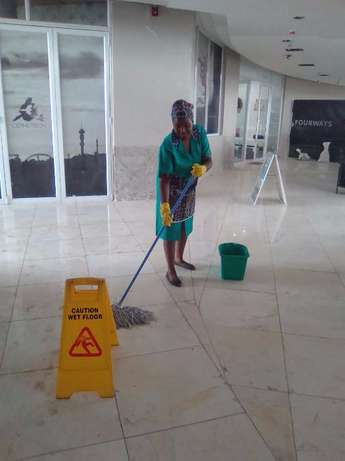 Pest Services and Cleaning Johannesburg - image 1