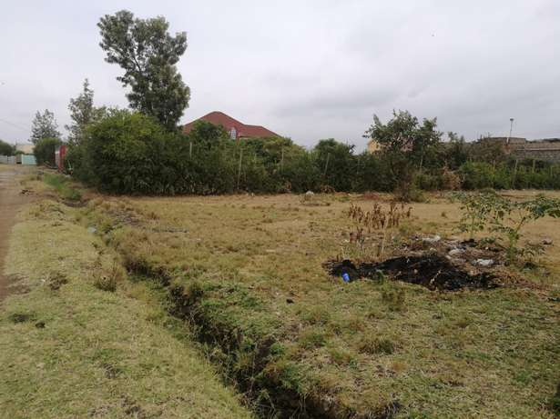 1/4 Acre Landless Estate, Thika. Thika - image 4