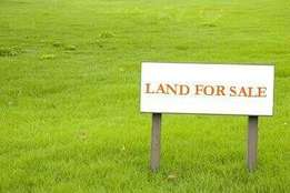 2 plots of land for sale with uncompleted blocks of flats for sale