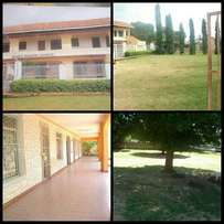 Commercial residence for rent