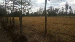 Rugati, Nanyuki - Ideal land for your perfect home