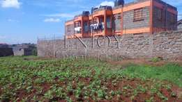 Ngoingwa 50x100 plot for sale in Thika
