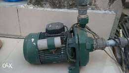 Original Italian DAB Surface Pump