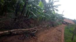 Titled plot of 30ft by 80ft in Kiwanga at 37m