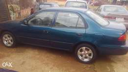 Toyota corolla blue(small but mighty)