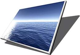 any laptop screen 15.6 Slim or normal price R1100
