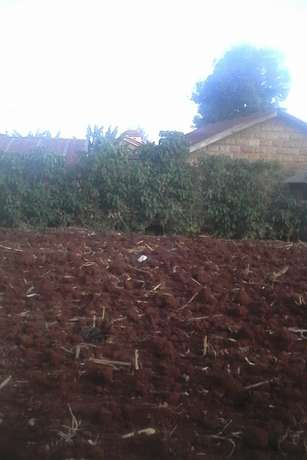 Plot at muchatha Ruaka - image 1