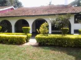 Excellent 4 bedroom bungalow to let Loresho