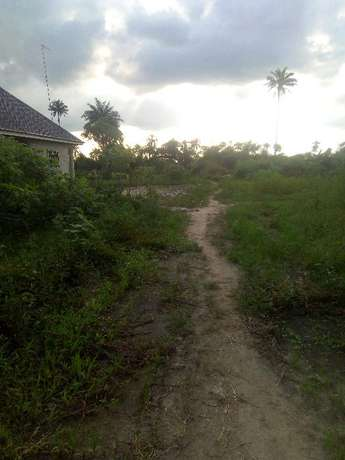 Distress; 3 Plots CornerPiece behind petronella eneka Port Harcourt - image 2