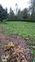 Kiambu Road one Acre for Lease