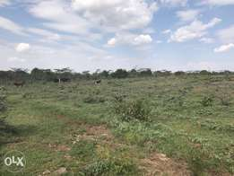 2.5 Acres Farming land