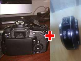 Canon 60d(used) camera and 40mm lens