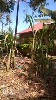 36fts by120fts plot on sale at Bukaya, Njeru at ugx23m