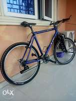 Mountain climber bicycle for sports