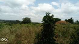 73 acres for sale at 100,000 per acre, in Mwangwei Marenje in Kwale