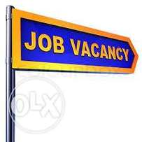 Chef/Cook and Housekeeper wanted Urgently.