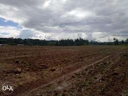 44 acres Virgin Land for sale Keringet!