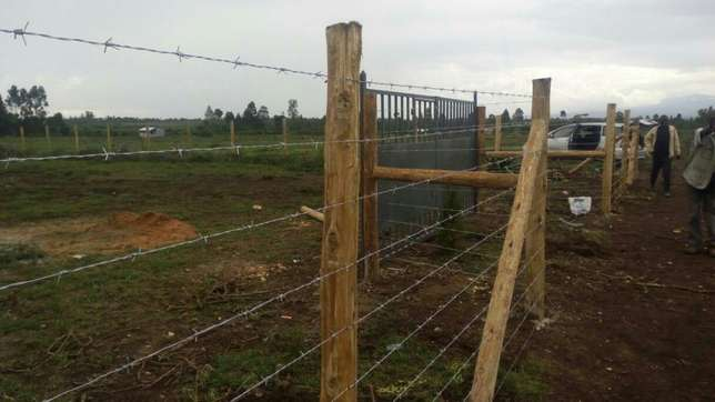 Cute fencing Westlands - image 3