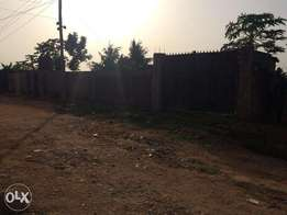 Half plot of land(fenced & gated) in a decent part of ikola,ipaja,lago