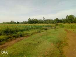 A 2.5acre land on sale in Kakrao,3km off migori town.