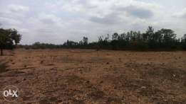 sale of land murang'a county