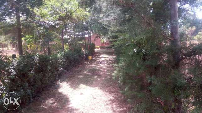 1 Acre land FOR SALE With a THREE bedroom house in Trans-Nzoia County Sinyerere - image 2