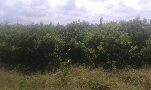 For sale.VIPINGO beach plot. 1 ACRE. 100% HOT property North Coast - image 2