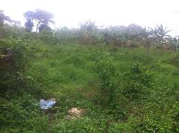 A plot of 22 decimals of land for sale in Wakiso-Kavumba