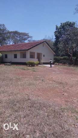 Bungalow House ideal for Office Off Thika Highway Own Compound Nairobi CBD - image 1