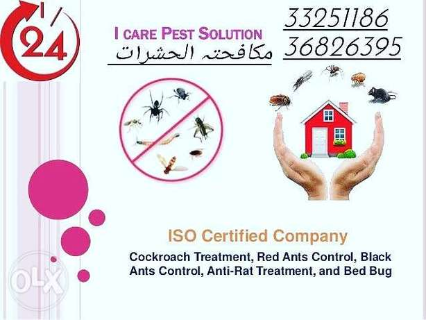 Asma pest control services with cleaning company مدينة حمد -  2