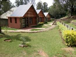 holiday cottages for booking in nanyuki