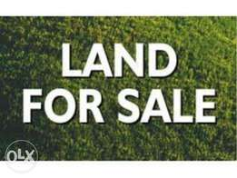 Thika Road Juja Prime 20 Acres For Sale