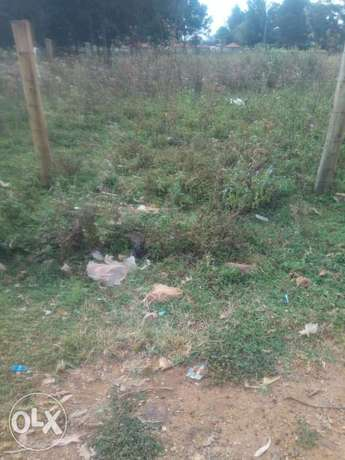Land kamkunji 40 peercels of land 1/4 1.65m good for homes Eldoret East - image 1