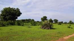 Offer!!!Offer!! Vipingo plots 1.9M