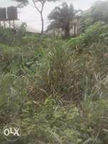 1 and half plot of land for sale at Woji