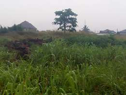 Dry area of 2 plot of land together in a decent and civilize at Ayobo