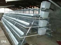 96-128 birds chicken cages at affordable price of your pocket,Details: