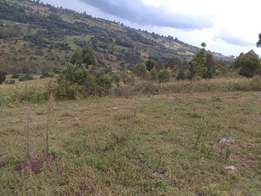 1000 Acres Fort tenan kericho county