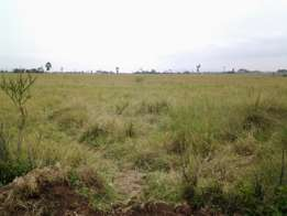 10 Acres for sale in Elementaita (Oljorai)