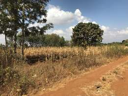 One acre commercial farm in Kakuzi, approx 2.8 Km from highway