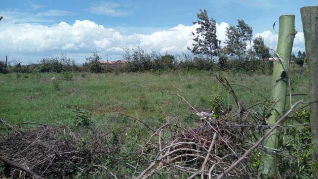 Ideal residential property on sale Ngong - image 2