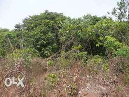 700 plots of land for sale at abia state