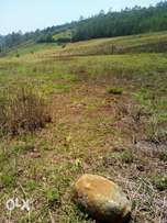 Land on sale 50*100 with Ready Title!!!