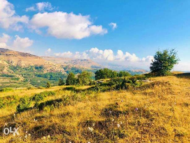 Land in Fakra (AHLAM village) with MOUNTAINS VIEW أرض في فقرا ٣٣٠٠ م ٢ فقرا -  2
