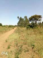 50x100ft plot of land for sale in mukono at 7m