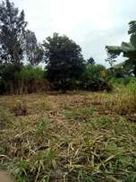 50 by 50 plot for sale at banana hill