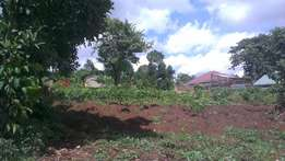 2 acres with each at 25m negotiable in Matuga with its tittle ready.