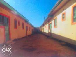 Rental units for sale in Mountain view Eldoret.
