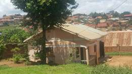 Kireka..A well situated plot of land 60x100